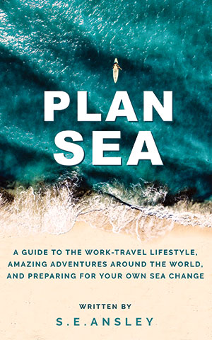 Plan Sea: A book by S.E.Ansley